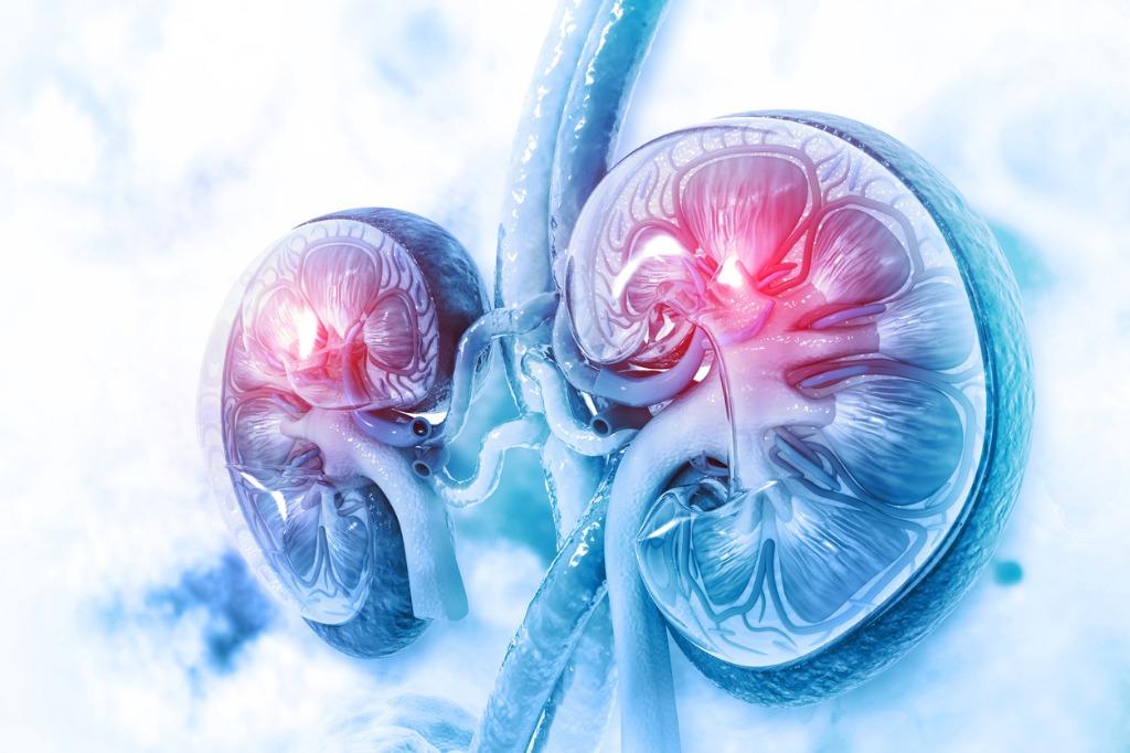 Stages-of-Kidney-Disease-CKD
